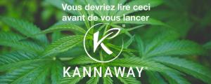 Kannaway avis